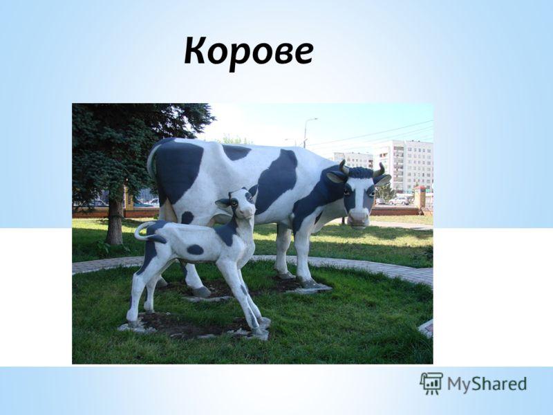 Корове