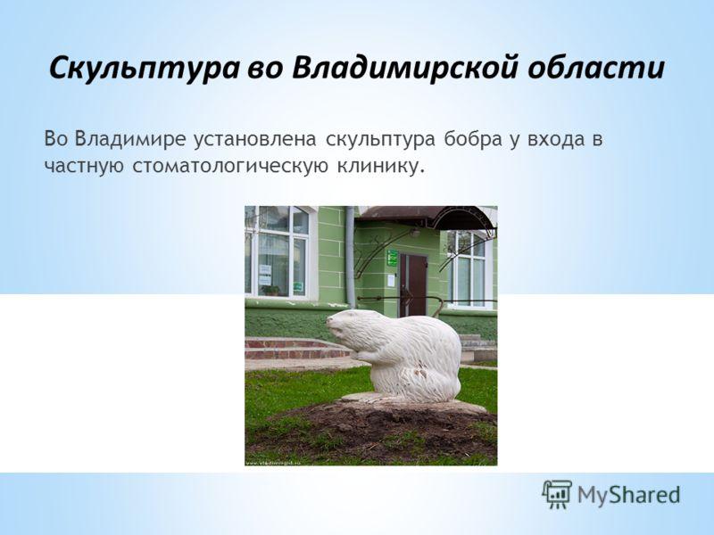 Скульптура во Владимирской области Во Владимире установлена скульптура бобра у входа в частную стоматологическую клинику.