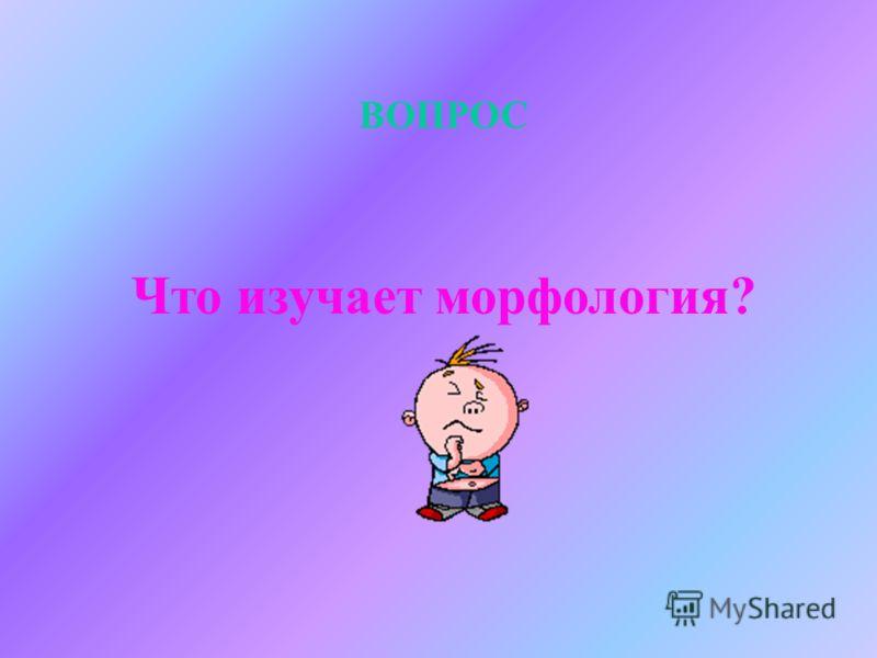 ОТВЕТ ОРФОЭПИЯ (от греч. orthos – «правильный» и epos – «речь»)