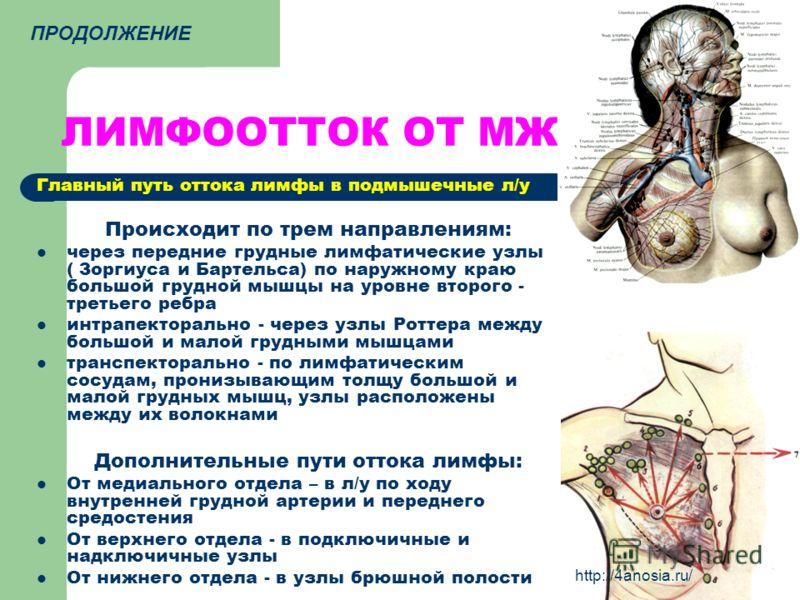 ЛИМФООТТОК ОТ МЖ Главный путь оттока лимфы в подмышечные л/у Происходит по трем направлениям: через передние грудные лимфатические узлы ( Зоргиуса и Бартельса) по наружному краю большой грудной мышцы на уровне второго - третьего ребра интрапекторальн