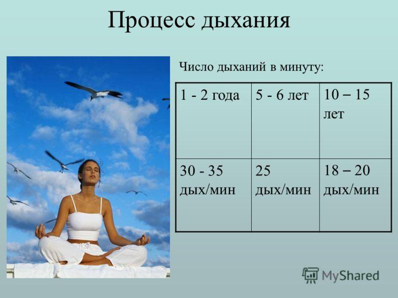 Процесс дыхания 1 - 2 года5 - 6 лет 10 – 15 лет 30 - 35 дых/мин 25 дых/мин 18 – 20 дых/мин Число дыханий в минуту: