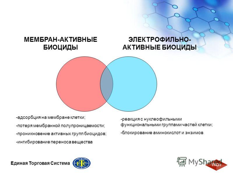 4 Единая Торговая Система МЕМБРАН-АКТИВНЫЕ БИОЦИДЫ ЭЛЕКТРОФИЛЬНО- АКТИВНЫЕ БИОЦИДЫ -адсорбция на мембране клетки; -потеря мембранной полупроницаемости; -проникновение активных групп биоцидов; -ингибирование переноса вещества -реакция с нуклеофильными