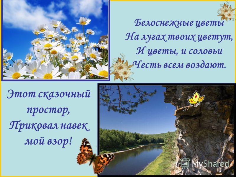 Белоснежные цветы На лугах твоих цветут, И цветы, и соловьи Честь всем воздают. Этот сказочный простор, Приковал навек мой взор!