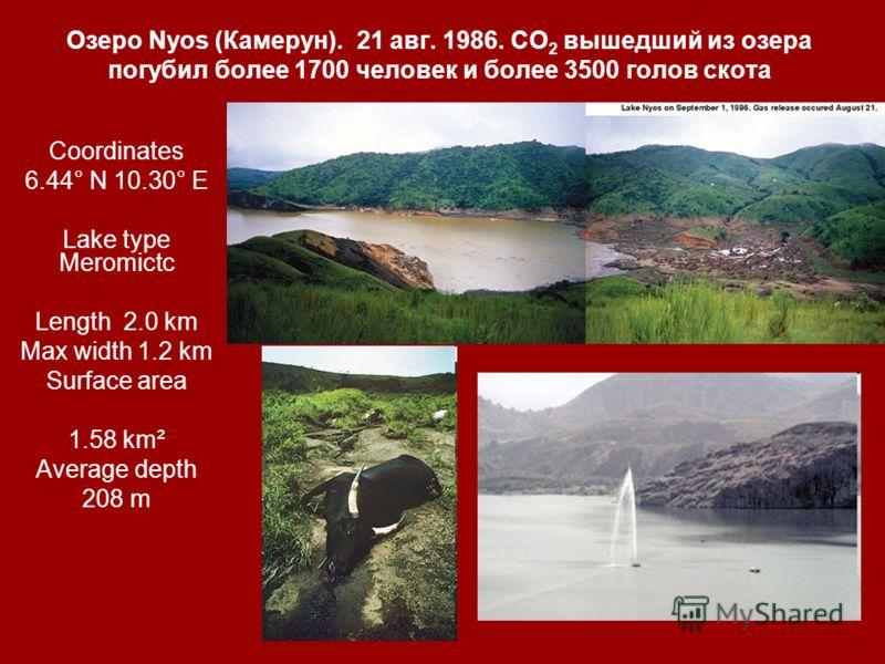Озеро Nyos (Камерун). 21 авг. 1986. СО 2 вышедший из озера погубил более 1700 человек и более 3500 голов скота Coordinates 6.44° N 10.30° E Lake type Meromictc Length2.0 km Max width 1.2 km Surface area 1.58 km² Average depth 208 m