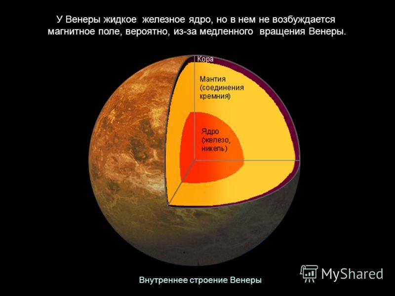 У Венеры жидкое железное ядро, но в нем не возбуждается магнитное поле, вероятно, из-за медленного вращения Венеры. Внутреннее строение Венеры