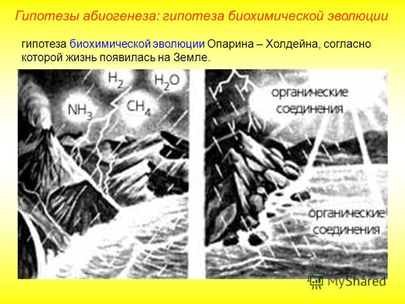 гипотеза биохимической эволюции Опарина – Холдейна, согласно которой жизнь появилась на Земле. Гипотезы абиогенеза: гипотеза биохимической эволюции
