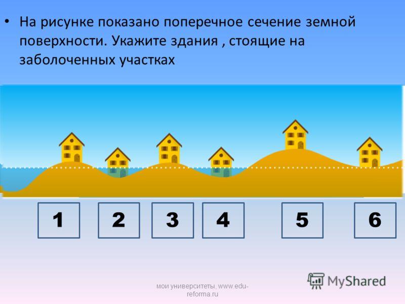 На рисунке показано поперечное сечение земной поверхности. Укажите здания, стоящие на заболоченных участках 345612 мои университеты, www.edu- reforma.ru