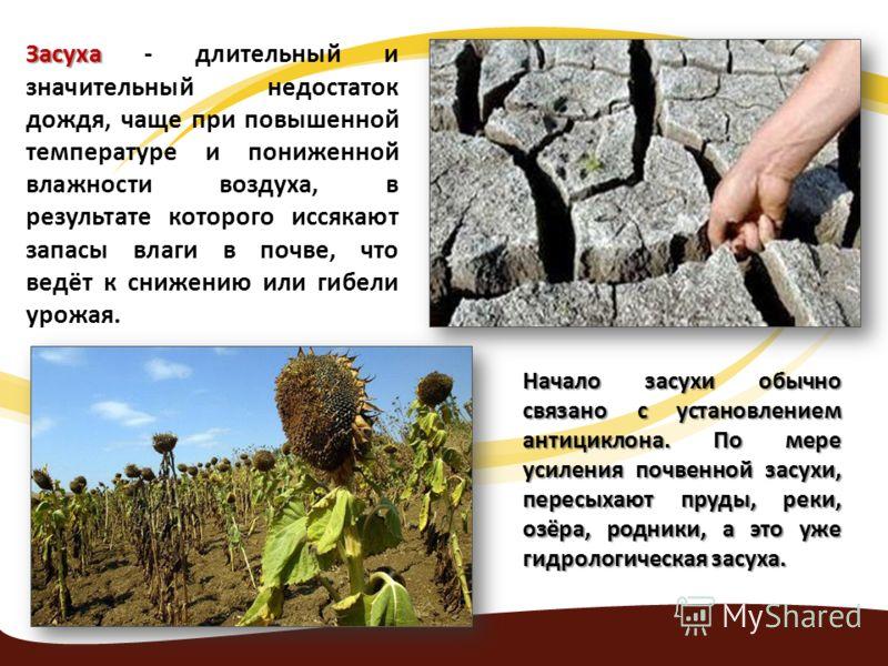 Засуха Засуха - длительный и значительный недостаток дождя, чаще при повышенной температуре и пониженной влажности воздуха, в результате которого иссякают запасы влаги в почве, что ведёт к снижению или гибели урожая. Начало засухи обычно связано с ус