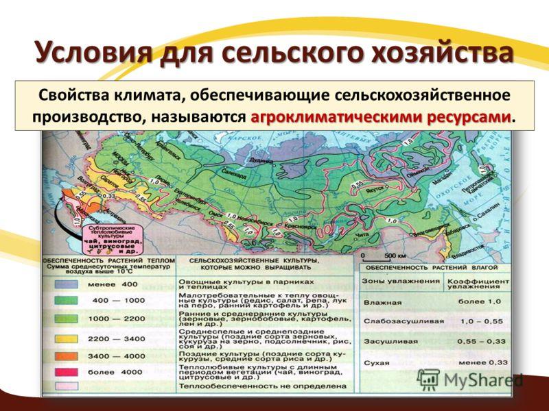 Условия для сельского хозяйства агроклиматическими ресурсами Свойства климата, обеспечивающие сельскохозяйственное производство, называются агроклиматическими ресурсами.