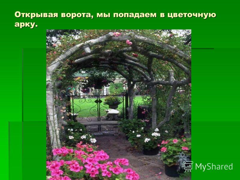 Открывая ворота, мы попадаем в цветочную арку.
