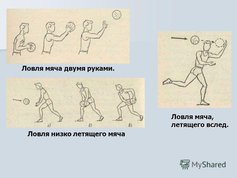 Ловля мяча двумя руками. Ловля низко летящего мяча Ловля мяча, летящего вслед.
