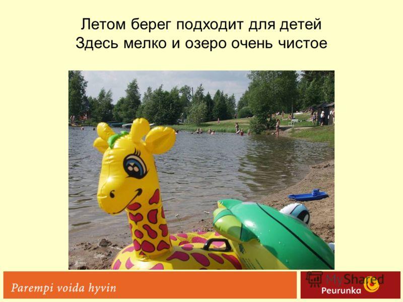 Летом берег подходит для детей Здесь мелко и озеро очень чистое