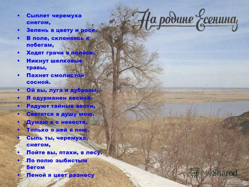 4 Сыплет черемуха снегом, Зелень в цвету и росе. В поле, склоняясь к побегам, Ходят грачи в полосе. Никнут шелковые травы, Пахнет смолистой сосной. Ой вы, луга и дубравы, - Я одурманен весной. Радуют тайные вести, Светятся в душу мою. Думаю я о невес