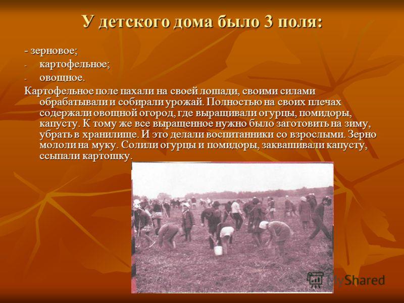 У детского дома было 3 поля: - зерновое; - картофельное; - овощное. Картофельное поле пахали на своей лошади, своими силами обрабатывали и собирали урожай. Полностью на своих плечах содержали овощной огород, где выращивали огурцы, помидоры, капусту.