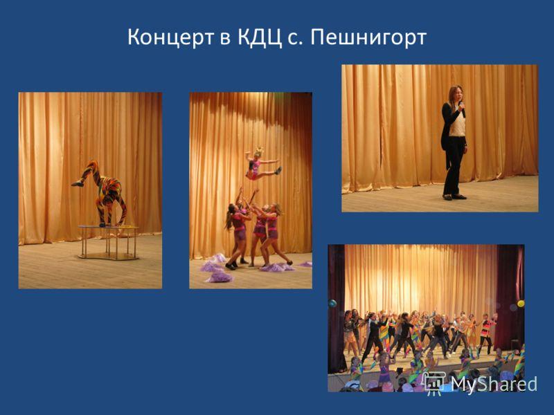 Концерт в КДЦ с. Пешнигорт