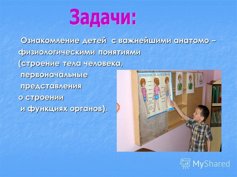 Ознакомление детей с важнейшими анатомо – Ознакомление детей с важнейшими анатомо – физиологическими понятиями (строение тела человека, первоначальные первоначальные представления представления о строении и функциях органов). и функциях органов).