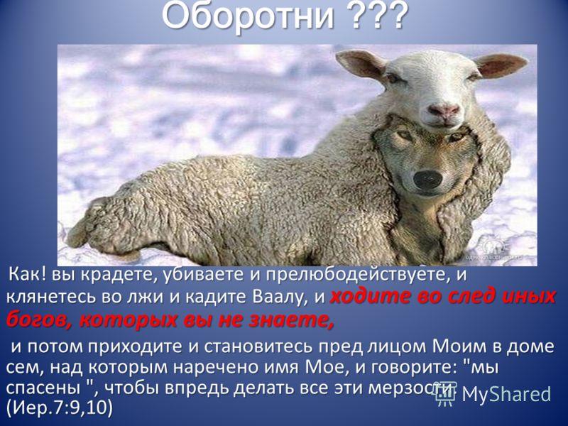 Оборотни ??? Как! вы крадете, убиваете и прелюбодействуете, и клянетесь во лжи и кадите Ваалу, и ходите во след иных богов, которых вы не знаете, Как! вы крадете, убиваете и прелюбодействуете, и клянетесь во лжи и кадите Ваалу, и ходите во след иных