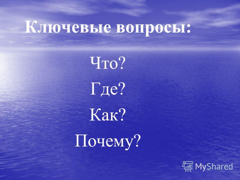 Ключевые вопросы: Что? Где? Как? Почему?