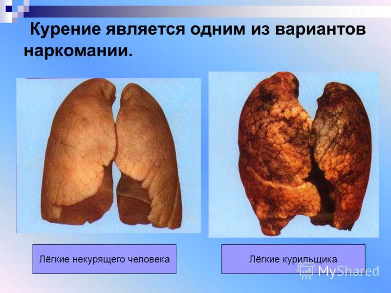 Лёгкие некурящего человекаЛёгкие курильщика Курение является одним из вариантов наркомании.