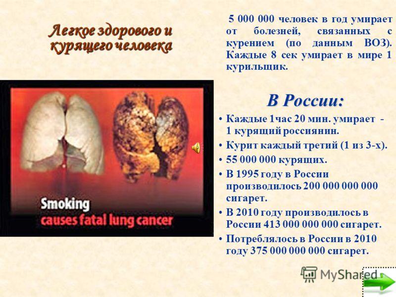 Легкое здорового и курящего человека 5 000 000 человек в год умирает от болезней, связанных с курением (по данным ВОЗ). Каждые 8 сек умирает в мире 1 курильщик. В России: Каждые 1час 20 мин. умирает - 1 курящий россиянин. Курит каждый третий (1 из 3-