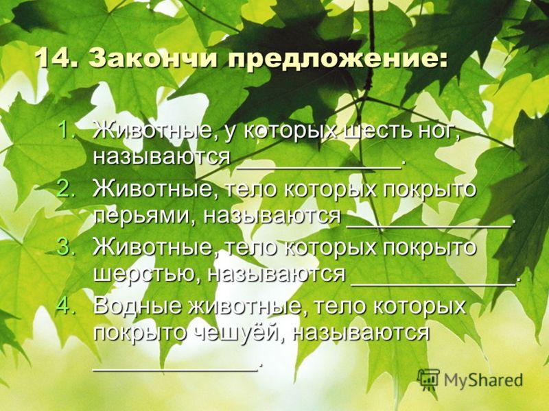 14. Закончи предложение: 1.Ж ивотные, у которых шесть ног, называются ____________. 2.Ж ивотные, тело которых покрыто перьями, называются ____________. 3.Ж ивотные, тело которых покрыто шерстью, называются ____________. 4.В одные животные, тело котор