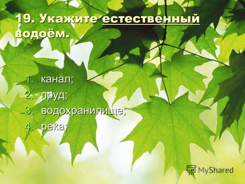 19. Укажите естественный водоём. 1.к анал; 2.п руд; 3.в одохранилище; 4.р ека;