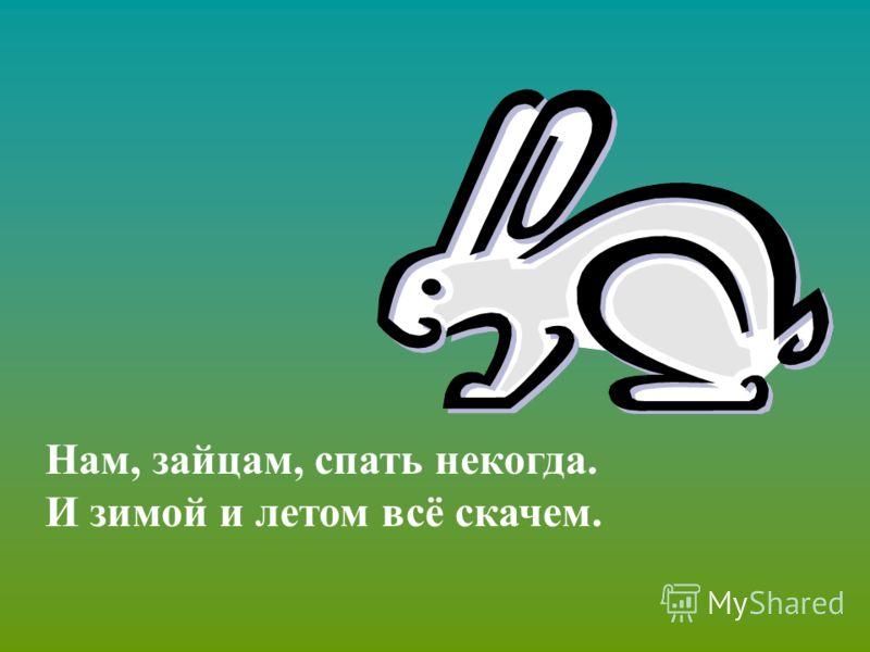 Нам, зайцам, спать некогда. И зимой и летом всё скачем.