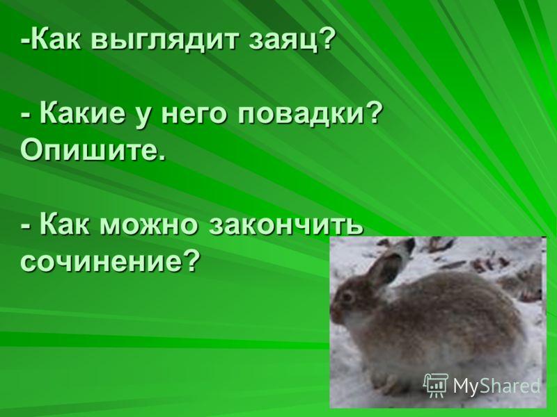 -Как выглядит заяц? - Какие у него повадки? Опишите. - Как можно закончить сочинение?