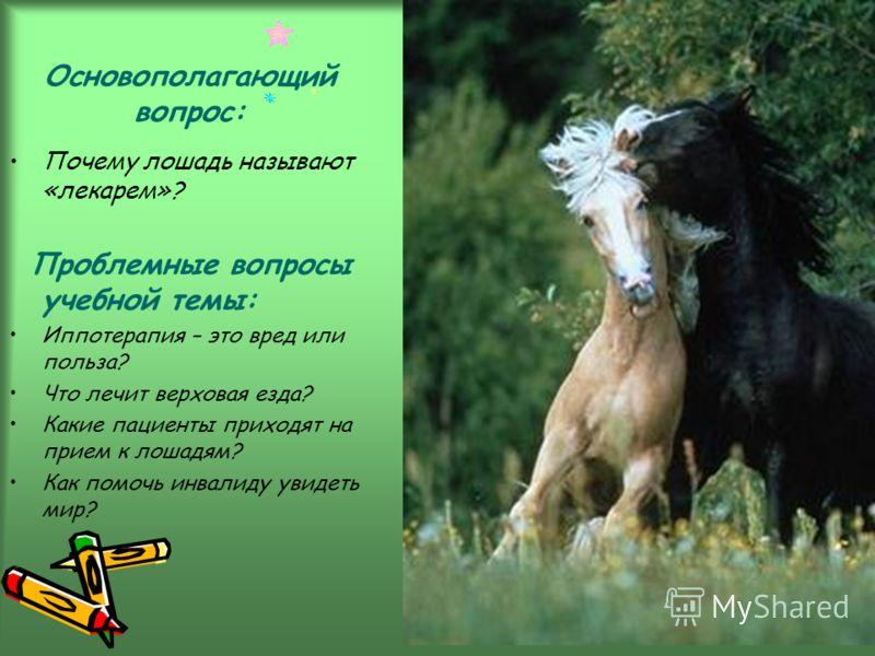 Основополагающий вопрос: Почему лошадь называют «лекарем»? Проблемные вопросы учебной темы: Иппотерапия – это вред или польза? Что лечит верховая езда? Какие пациенты приходят на прием к лошадям? Как помочь инвалиду увидеть мир?