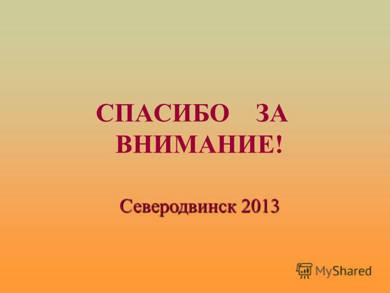 СПАСИБО ЗА ВНИМАНИЕ! Северодвинск 2013