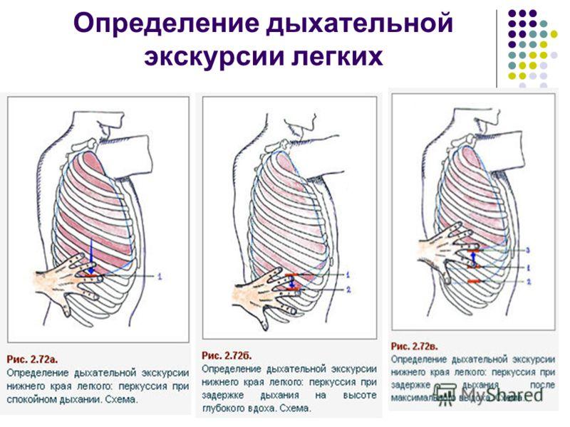 Определение дыхательной экскурсии легких