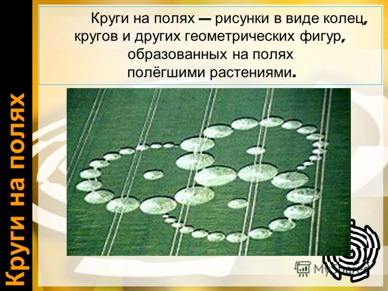 Круги на полях Круги на полях рисунки в виде колец, кругов и других геометрических фигур, образованных на полях полёгшими растениями.