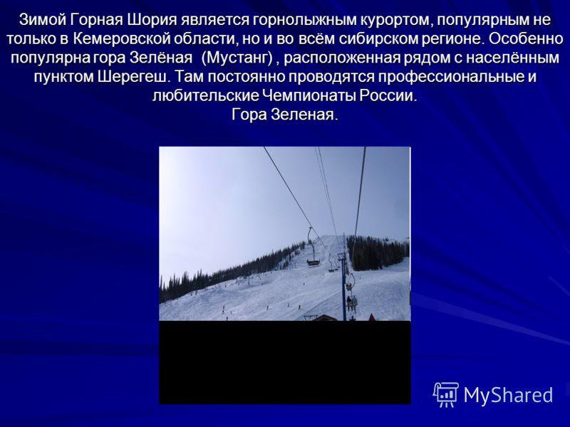 Зимой Горная Шория является горнолыжным курортом, популярным не только в Кемеровской области, но и во всём сибирском регионе. Особенно популярна гора Зелёная (Мустанг), расположенная рядом с населённым пунктом Шерегеш. Там постоянно проводятся профес