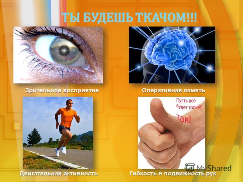 ТЫ БУДЕШЬ ТКАЧОМ!!! Зрительное восприятие Оперативная память Гибкость и подвижность рук Двигательная активность