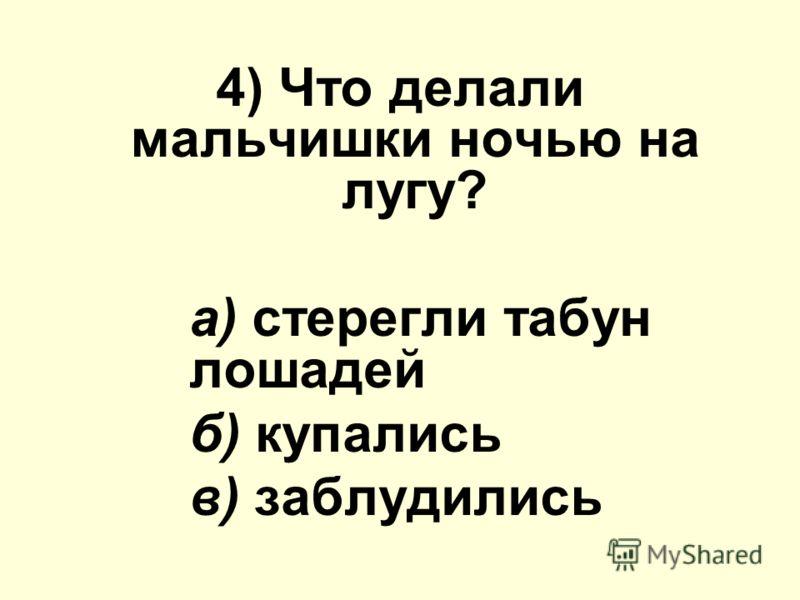 4) Что делали мальчишки ночью на лугу? а) стерегли табун лошадей б) купались в) заблудились