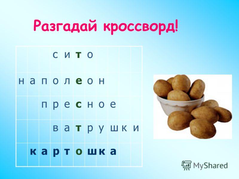 сито наполеон пресное ватрушки картошка