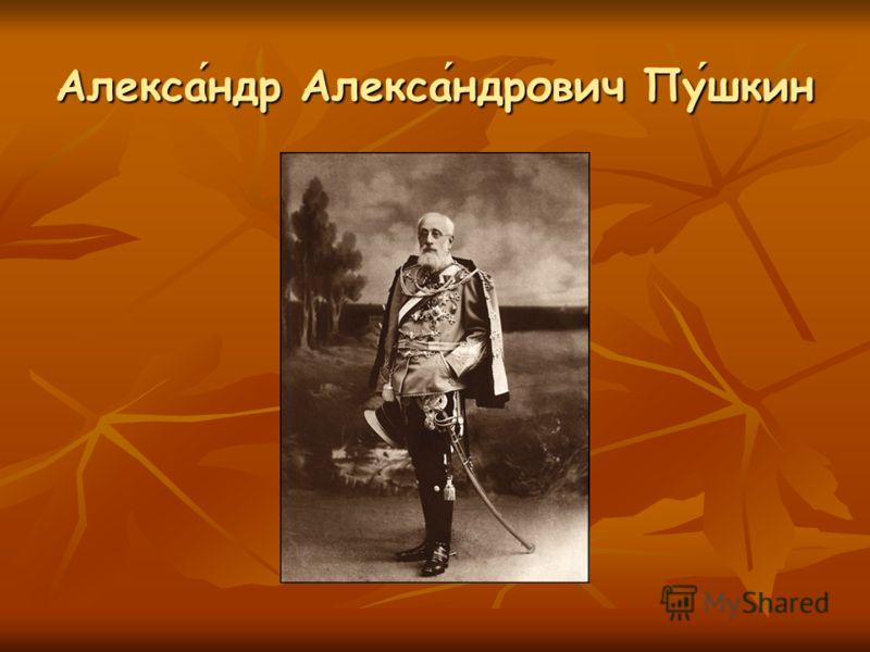 Александр Александрович Пушкин