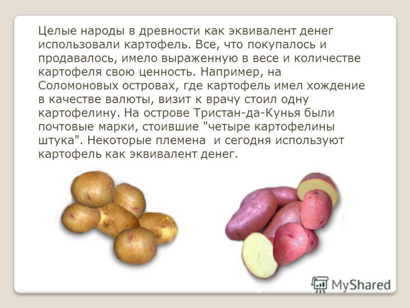 Целые народы в древности как эквивалент денег использовали картофель. Все, что покупалось и продавалось, имело выраженную в весе и количестве картофеля свою ценность. Например, на Соломоновых островах, где картофель имел хождение в качестве валюты, в