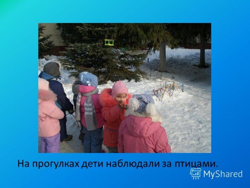 На прогулках дети наблюдали за птицами.