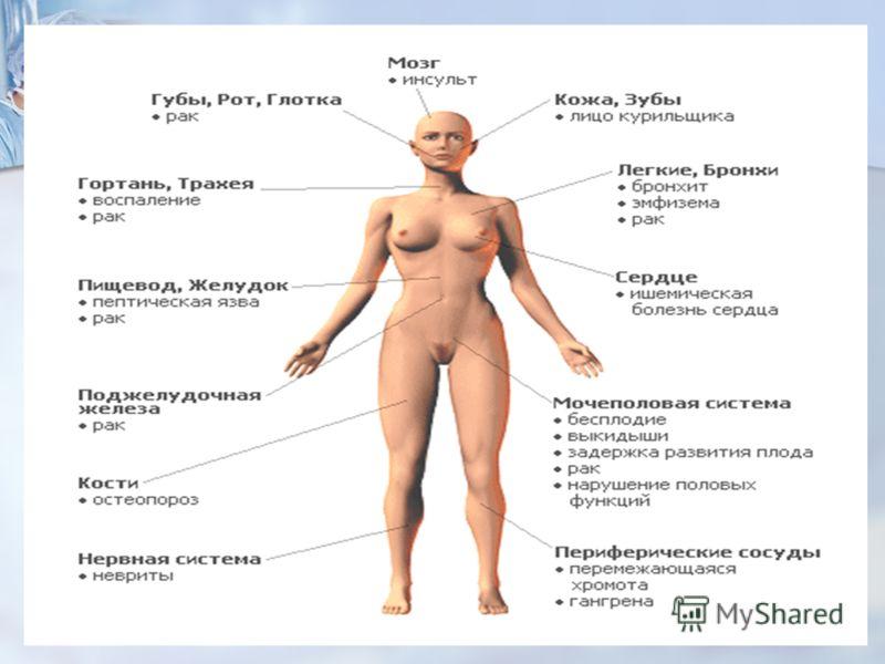 organizm-cheloveka-posle-seksa