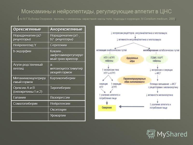 ( ) Моноамины и нейропептиды, регулирующие аппетит в ЦНС ( по М.Г.Бубнова Ожирение: причины и механизмы нарастания массы тела, подходы к коррекции, М.Consilium medicum, 2005) ОрексигенныеАнорексигенные Норадреналин (a2- рецепторы) Норадреналин (a1-,