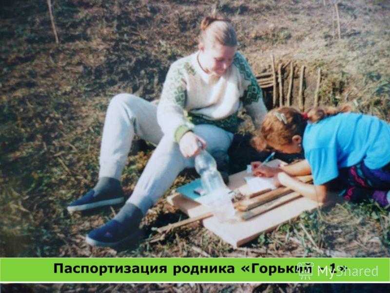Паспортизация родника «Горький - 1»