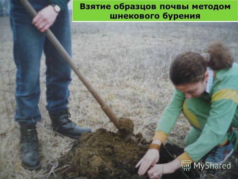 Взятие образцов почвы методом шнекового бурения