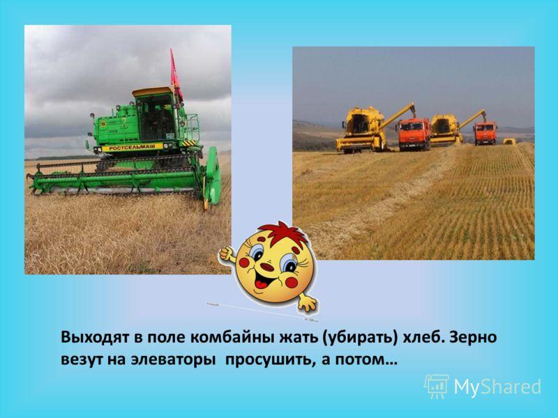 Выходят в поле комбайны жать (убирать) хлеб. Зерно везут на элеваторы просушить, а потом…