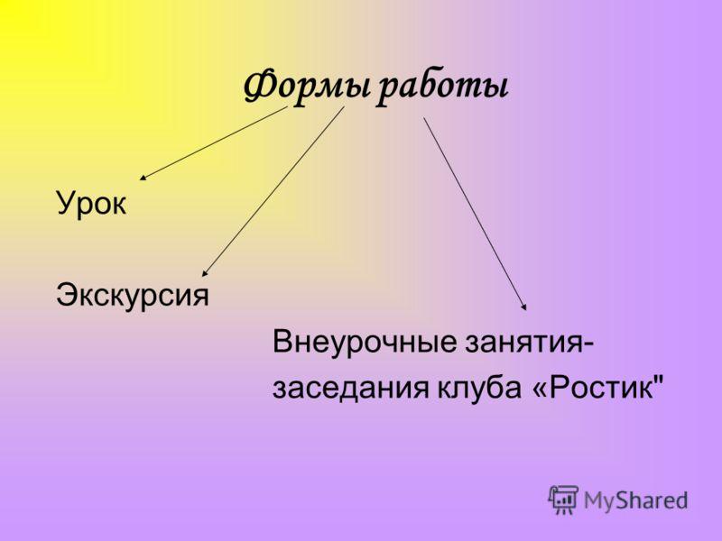 Формы работы Урок Экскурсия Внеурочные занятия- заседания клуба «Ростик