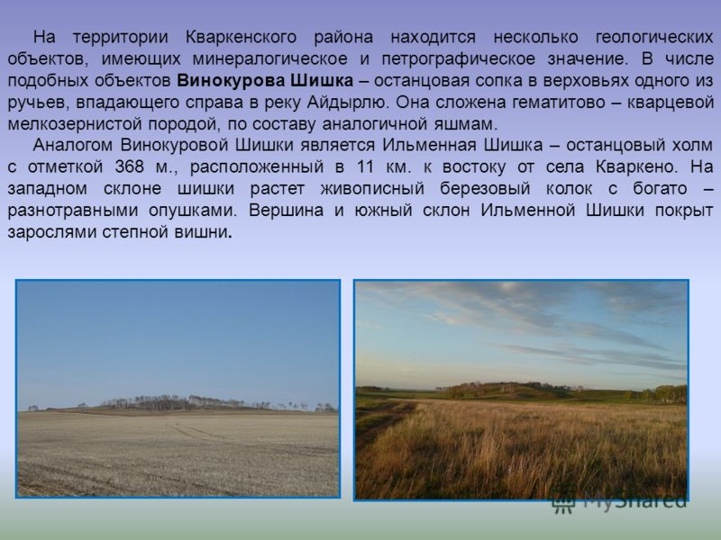 На территории Кваркенского района находится несколько геологических объектов, имеющих минералогическое и петрографическое значение. В числе подобных объектов Винокурова Шишка – останцовая сопка в верховьях одного из ручьев, впадающего справа в реку А