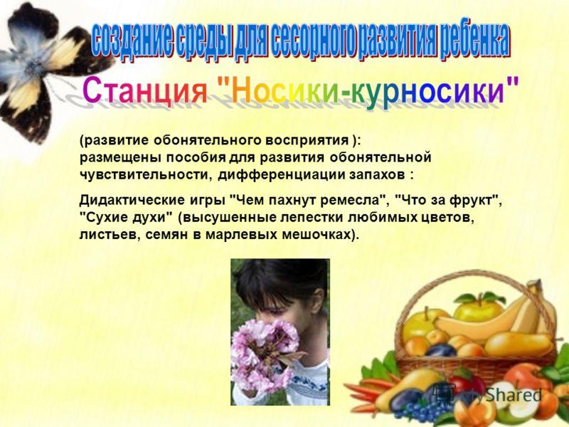 (развитие обонятельного восприятия ): размещены пособия для развития обонятельной чувствительности, дифференциации запахов : Дидактические игры