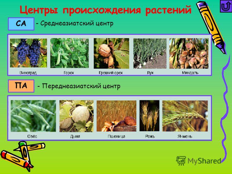 Центры происхождения растений СА ПА - Переднеазиатский центр - Среднеазиатский центр