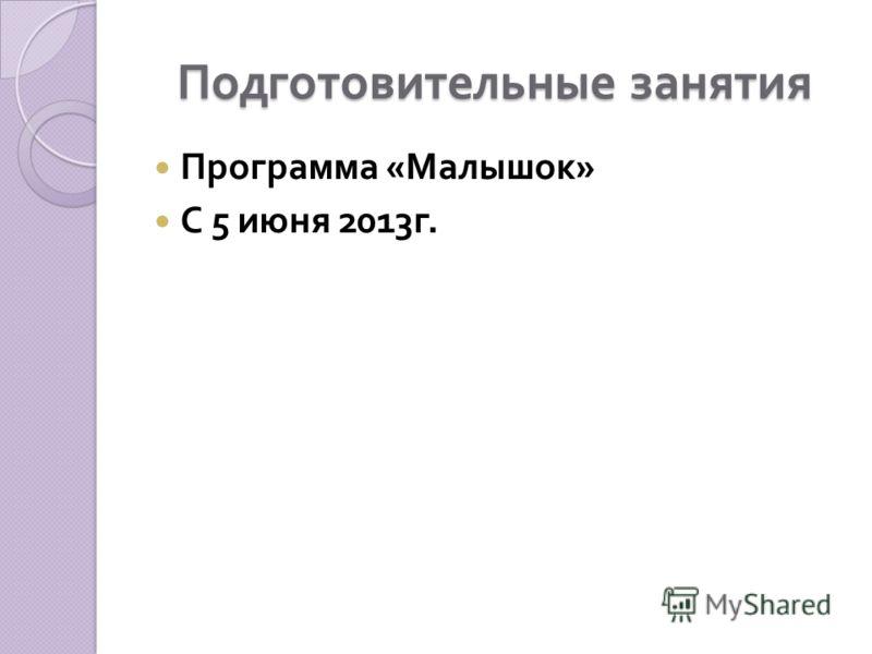 Подготовительные занятия Программа « Малышок » С 5 июня 2013 г.
