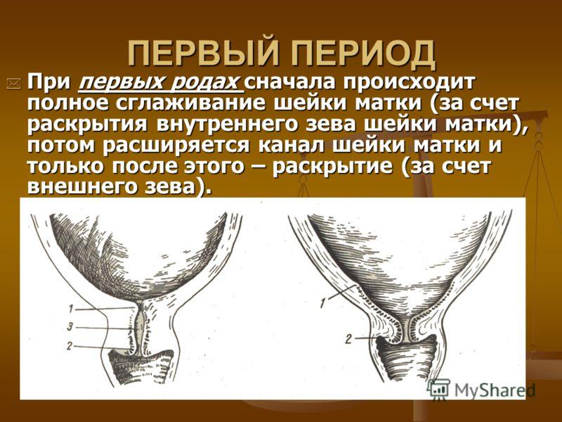 ПЕРВЫЙ ПЕРИОД При первых родах сначала происходит полное сглаживание шейки матки (за счет раскрытия внутреннего зева шейки матки), потом расширяется канал шейки матки и только после этого – раскрытие (за счет внешнего зева). При первых родах сначала